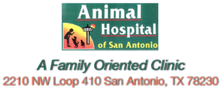 Animal Hospital of San Antonio
